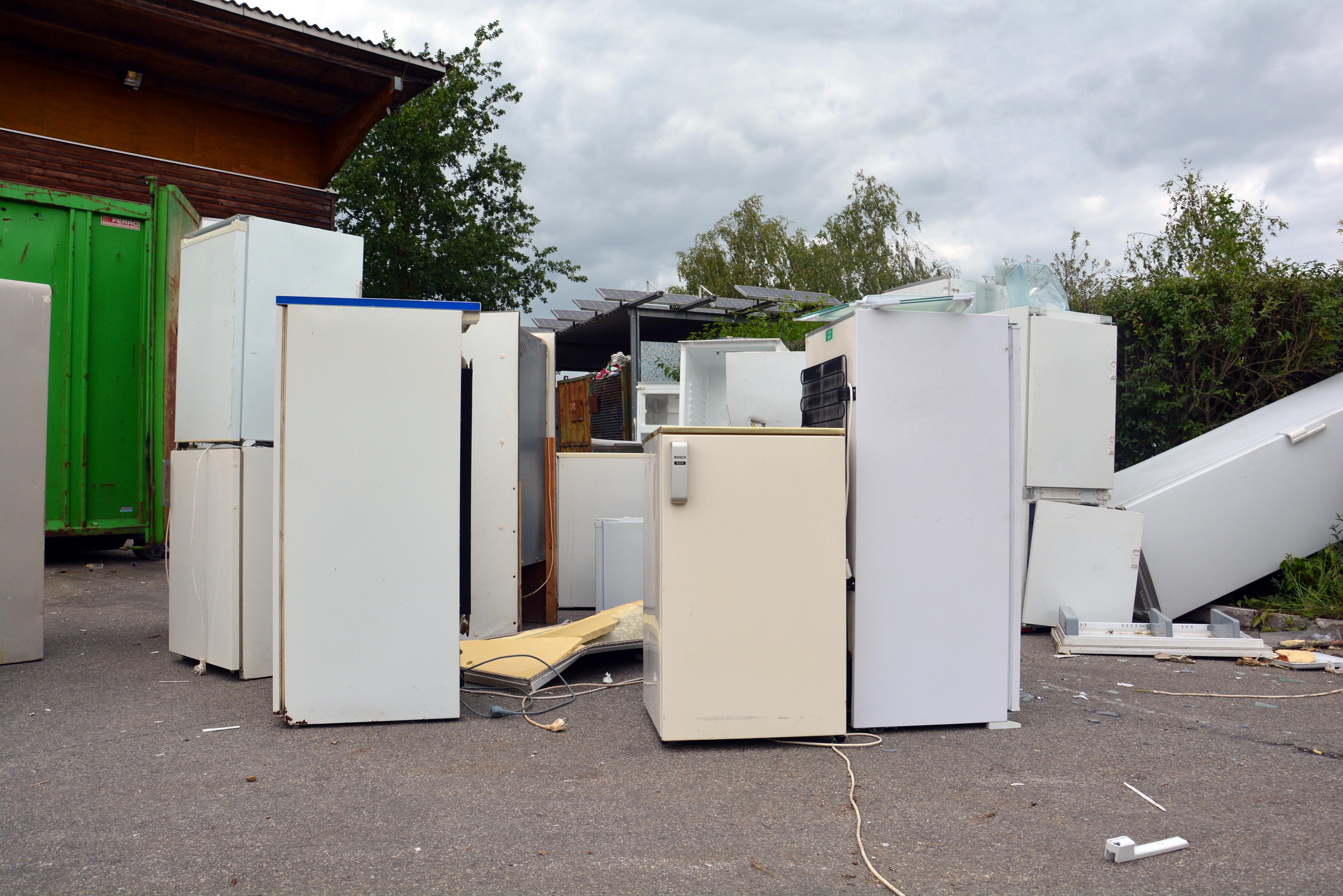 Bosch Kühlschrank Zu Laut : Ältester kühlschrank im landkreis pfaffenhofen a d ilm gesucht